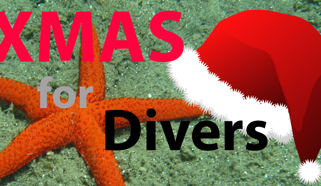 10 Special Christmas Gifts For Divers