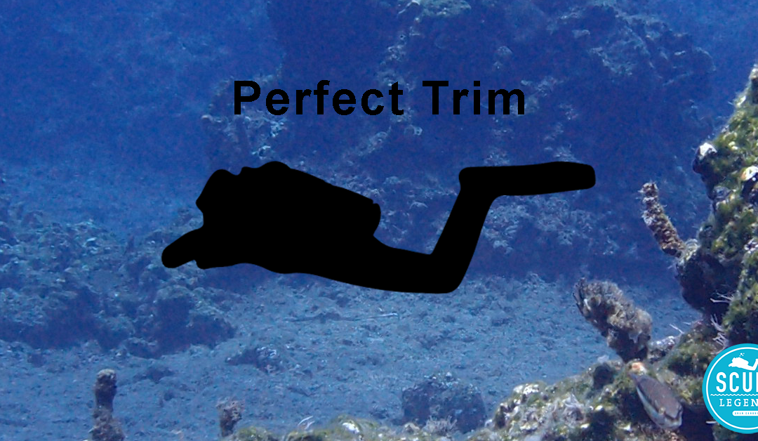 Buoyancy Sessions 4 – Improve your trim